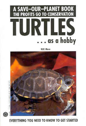 Turtles as a hobby