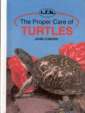 The proper care of Turtles