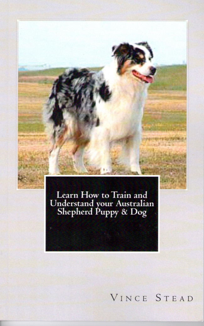 Learn How To Train And Understand Your Australian Shepherd Puppy Dog