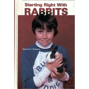 Starting right with Rabbits