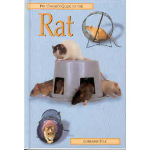 Rat - a pet owner's guide to the