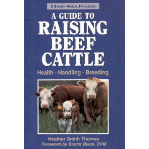 A guide to raising Beef Cattle
