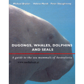 Dugongs, Whales, Dolphins and Seals