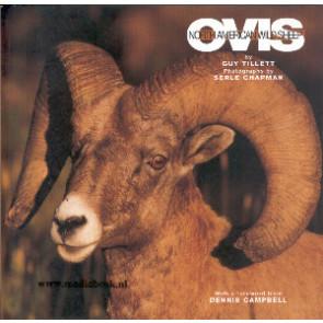 Ovis, North American Wild Sheep
