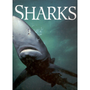 Sharks: Myth and Reality