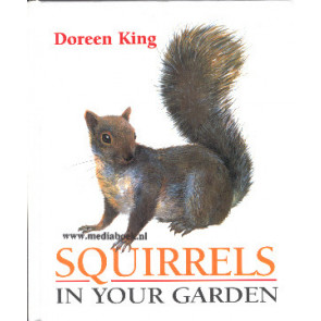 Squirrels in your garden