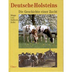 Deutsche Holsteins