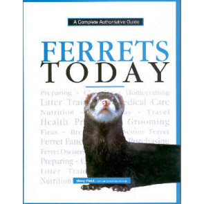 Ferrets Today