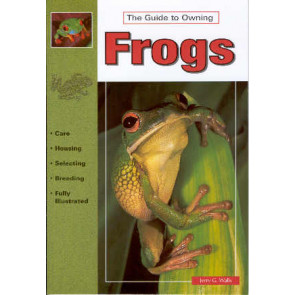 The guide to owning Frogs