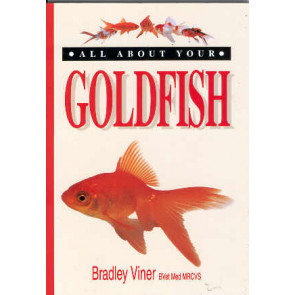 Goldfish, All about your