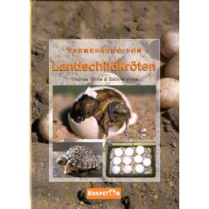 Vermehrung von Landschildkröten