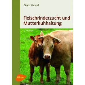 Fleischrinder und Mutterkuhhaltung