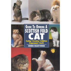 A guide to owning a Scottish Fold Cat