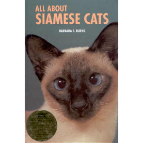 All about Siamese cats
