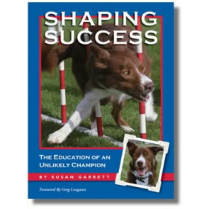 Shaping Success