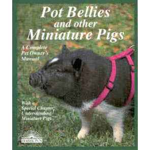 Pot Bellies and other Minature Pigs