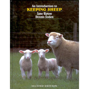 An introduction to keeping Sheep