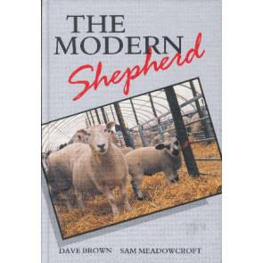 The modern shepherd
