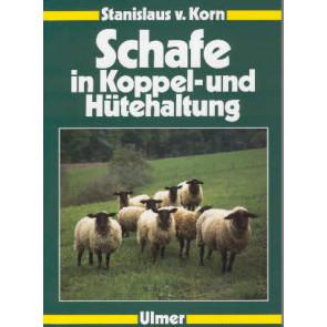 Schafe in Koppel- & Hütehaltung