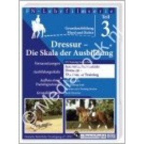 Dressage - The Scale of Training