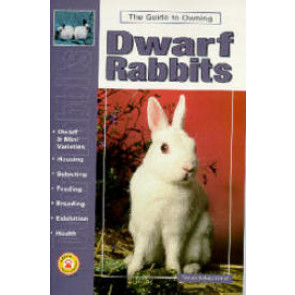 A guide to owing Dwarf Rabbits