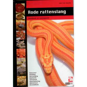 Rode rattenslang