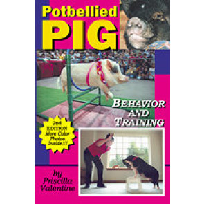 Potbellied Pig - Behavior and Training