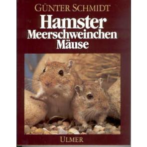 Hamster, Meerschweinchen Mäuse