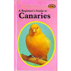 A beginner's guide to Canaries