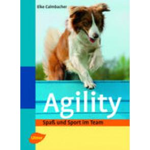 Agility - Spass und Sport im Team
