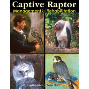 Captive Raptor