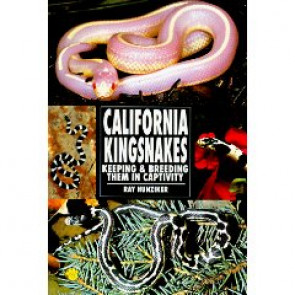California Kingsnakes