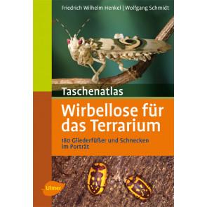 Wirbellose für das Terrarium - Taschenatlas
