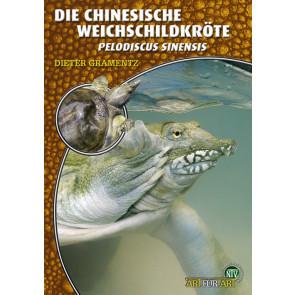 Die chinesische Weichschildkröte