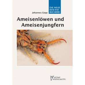 Ameisenlöwen und Ameisenjungfern