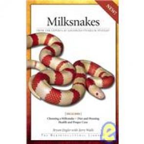 Milksnakes