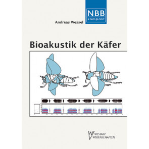 Bioakustik der Käfer