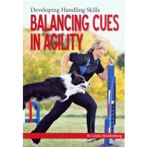 Balancing Cues in Agility*