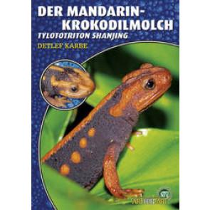 Der Mandarin-Krokodilmolch (Tylototriton Shanjing)