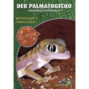 Der Palmatogecko (Pachydactylus Rangei)