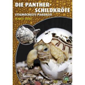 Die Panther-Schildkröte (Stigmochelys Pardalis)