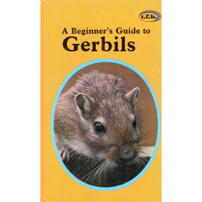 A Beginner's Guide to Gerbils