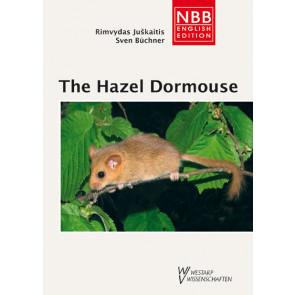 The Hazel Dormouse