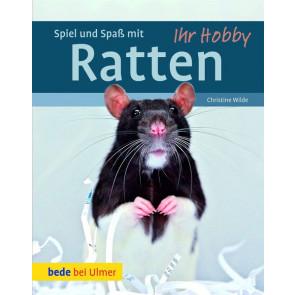 Spiel und Spaß mit Ratten