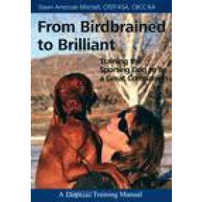 From birdbrained to brilliant