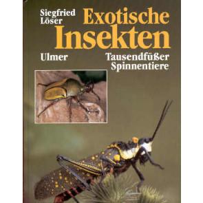 Exotische Insekten