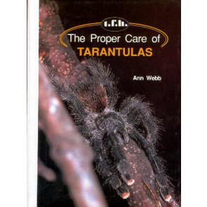 The proper care of Tarantulas