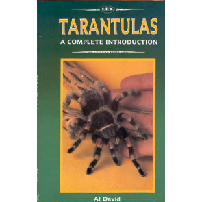A complete introduction Tarantulas
