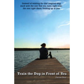 Train the dog in front of you*
