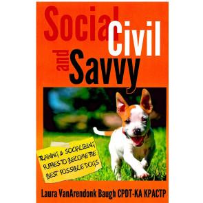 Social, Civil and Savvy*